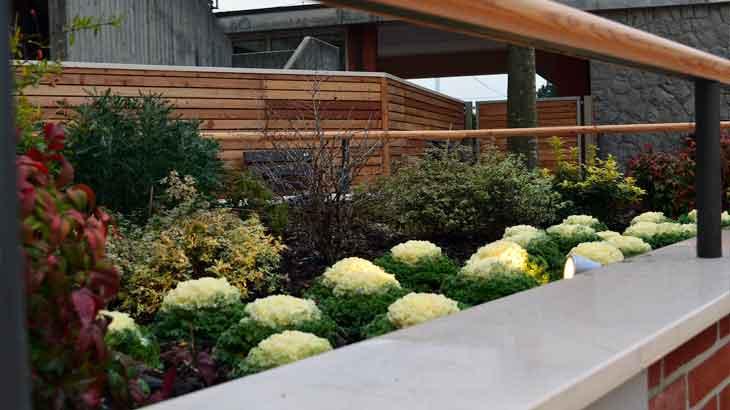 Giardini Sensoriali Progettazione E Realizzazione